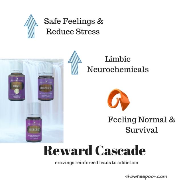 Safe Feelings &Reduce Stress (1)