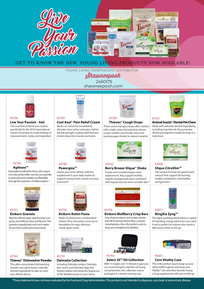 Convention-Product-Flyer